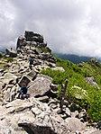 Mt.Kinposan(Kinpohsan) 20130707-P7070133 (9254570031).jpg