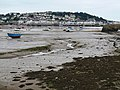 Mud at Instow - geograph.org.uk - 941915.jpg