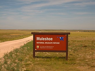 Muleshoe National Wildlife Refuge - Image: Muleshoe Refuge IMG 0390