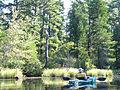 Mullica River 7.jpg
