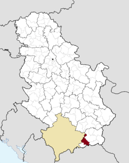 Town and municipality in Southern and Eastern Serbia, Serbia