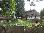 Museum of Folk Architecture and Ethnography in Pyrohiv - old house - 2448.jpg
