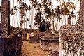 Muslim tombs in Bagamoyo (3200861068).jpg