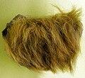 Mylodon fur.jpg