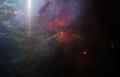 """NGC 2023 """"Sunset Glow"""".png"""