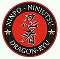 NINJA DRAGON RYU.jpg