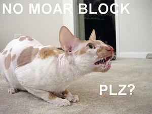 lolcat of blocked user