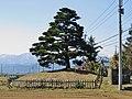 Nakasendo Hiraide ichirizuka b.jpg
