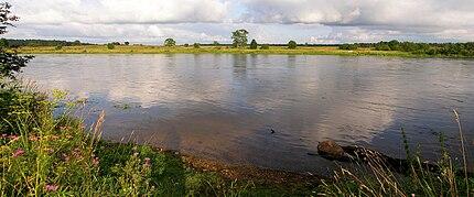 Narva River near Permisküla.jpg