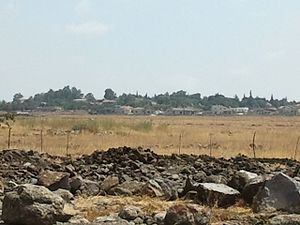 Natur, Golan Heights - Image: Natur 1