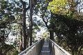 Nature Lead The Way.JPG