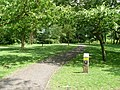 Nature trail, Stanley Park - geograph.org.uk - 1387069.jpg