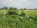Naturschutzgebiet Hetter-Millinger Bruch PM18-02.jpg
