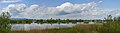 Naturschutzgebiet Rheindelta, Fußacher Lagune.jpg