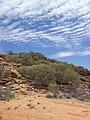 Near Alice Springs - panoramio.jpg