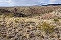 Near Domingo Canyon - Flickr - aspidoscelis (1).jpg