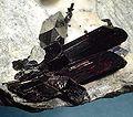 Neptunite-Benitoite-174612.jpg