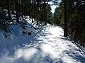 Nevà - España - panoramio - Juan Manuel Gienini.jpg