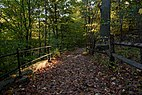 New York Botanical Garden October 2016 012.jpg