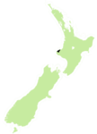 New plymouth electorate 2008.png
