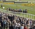 Newbury Racecourse, finish.jpg