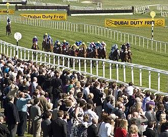 Newbury Racecourse - Horserace finishing at Newbury
