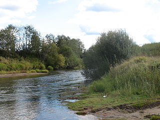 Parfenyevsky District District in Kostroma Oblast, Russia