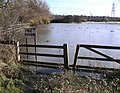 No Fishing again - geograph.org.uk - 1042077.jpg