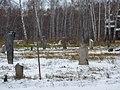 Novosibirsky District, Novosibirsk Oblast, Russia - panoramio (15).jpg