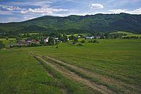 Obec od severu, Runina, okres Snina.jpg