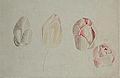 Odano Naotake Sketchbook (Akita Museum of Modern Art).jpg