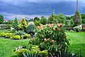 Ogród Zosi 2 - panoramio.jpg
