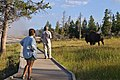 Old Faithful Basin, Yellowstone National Park (7742962212).jpg