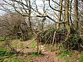 Old Iron Gate, footpath above Greenway House - geograph.org.uk - 369227.jpg