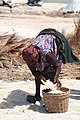 Old lady Collecting Salt on the Songhor Lagoon.jpg