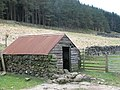 Old shed - geograph.org.uk - 468486.jpg