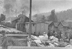 Capture of Olovo (1941) - Partisans burned railway station in Olovo after they captured it in 1943
