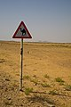 Oman camel sign.jpg