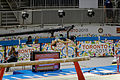 On the beam 4 2015 Pan Am Games.jpg