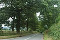 On the brow of a hill - geograph.org.uk - 1440248.jpg