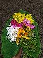 Onam Flowers by Haritha Gangadharan 20200828 072844.jpg