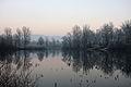 Opekarna ponds winter.jpg