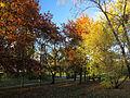Orlyatko park, Kiev4.JPG