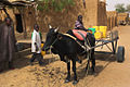 Ox cart Niger.jpg