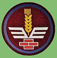 Oznaka służb kwat.JPG