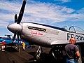 P-51 Sara Jean Nose (4597141455).jpg
