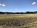 Paddy fields near Shin-Toyotsu Station 3.jpg