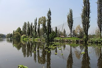 Aztec - Contemporary chinampa agriculture in Xochimilco