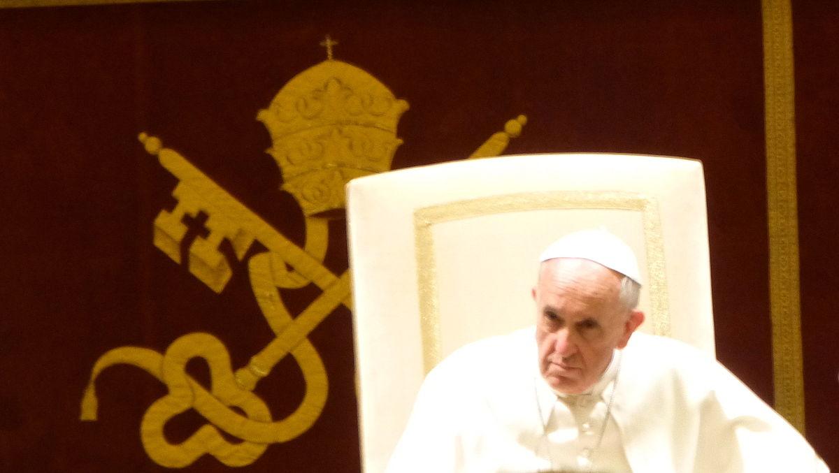 Papst Franziskus Wikipedia