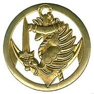 Insigne de béret des parachutistes coloniaux modèle 1962